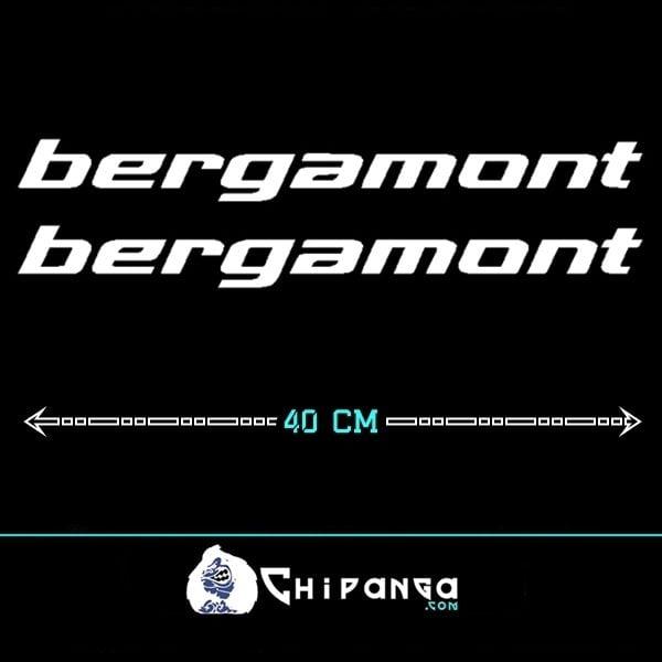 Pegatinas Bergamont Cuadro N