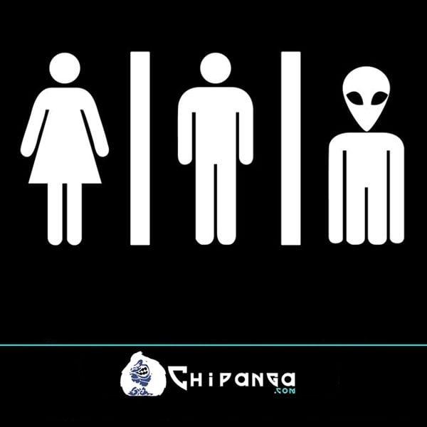 Vinilo Alien Servicios